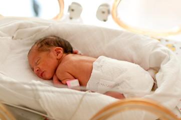 im Inkubator