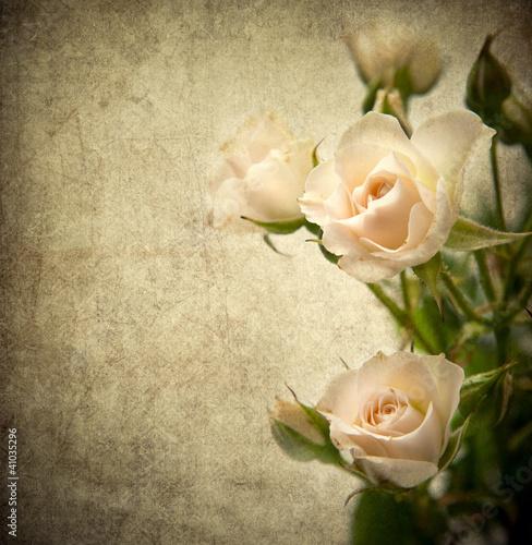 Rose texture