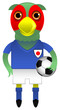 Japan Football Soccer Mascot Character