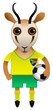 South Africa Football Soccer Mascot Character