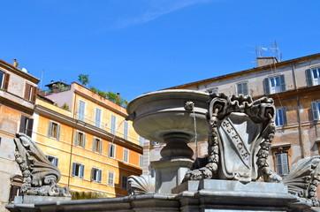 Particolare della Fontana di Piazza Santa Maria in Trastevere