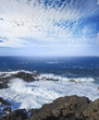 wild blue ocean