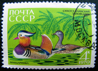 USSR - Moscow stamp 1970: Mandarin Duck couple