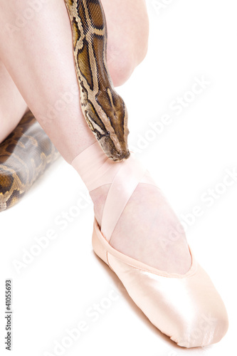 Ballerina's feet in pointe and python on isolated white
