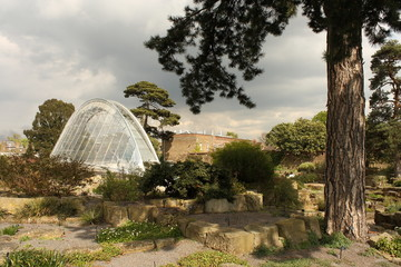 Alpine House in Kew Gardens