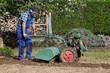 Rotary hoe,  Bodenbearbeitung mit Fräse