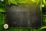 Fototapety Nature Blackboard