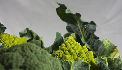 Broccolo e cavolfiore romano