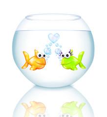 Guppy Love in Fish Bowl