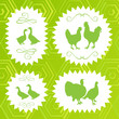 Ecology farm chicken, goose, duck and turkey label vector