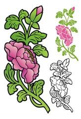 Begonia stem