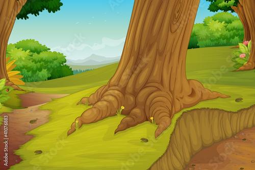 Deurstickers Bosdieren forest