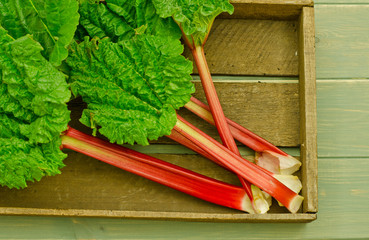 rhubarb in an old wooden tray