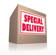 Special Delivery Mailed Cardboard Box Shipment