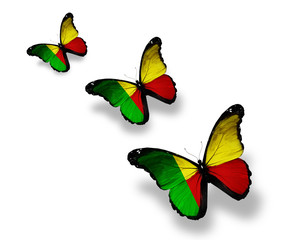 Three Benin flag butterflies, isolated on white