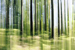 forest vertical motion blur