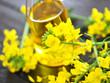 Rapsöl, Blüten