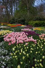 Giardini di Keukenhof