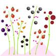 Jardín de frutas