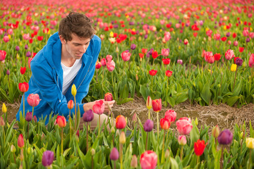 Young man in Dutch tulip fields
