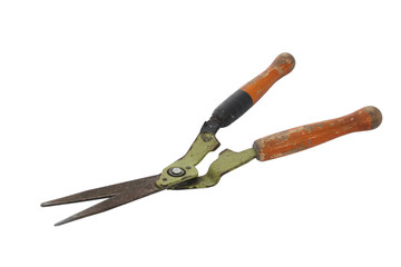 Old and rusty garden shears on a white background.