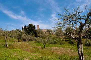 Pieve Santo Stefano - Lucca