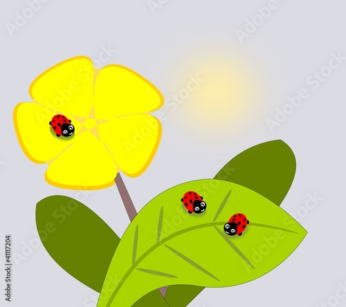 Fotobehang Lieveheersbeestjes Three cute ladybugs and a yellow flower