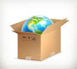 World in box, vector