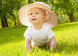 Fototapety baby sommer wiese