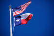 Flags of America and Texas 4