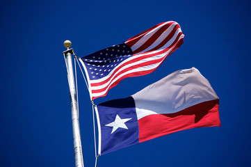 Flags of America and Texas 3