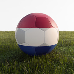 netherland soccer ball isolated on grass