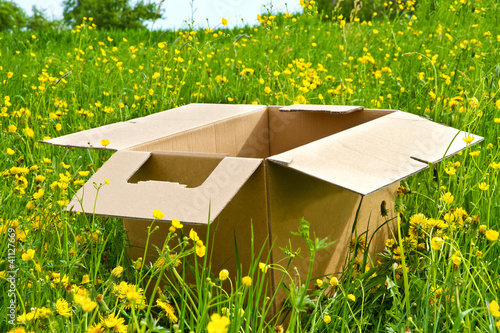 Karton auf der Wiese
