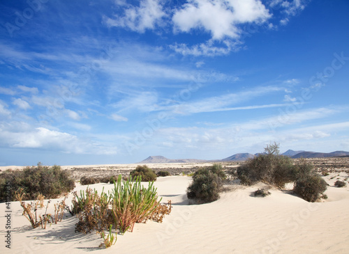Fototapeten,fuerteventura,sand,sanddünen,ocolus