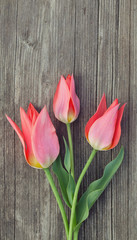 three red tulips on wooden table