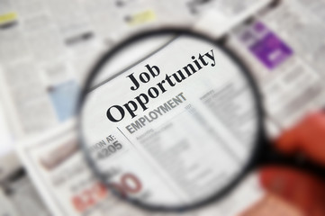 "Magnifying glass over  ""Job Opportunity"" text"