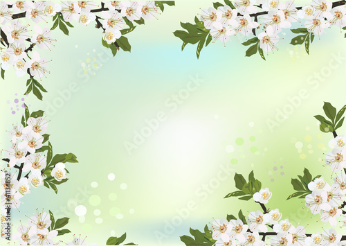 sakura white floral frame