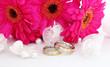 Two wedding rings