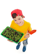 Happy boy ready to plant spring seedlings