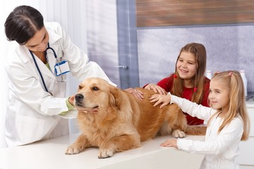 Little girls and dog at pets' clinic