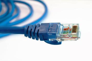 conector de red RJ45 de color azul