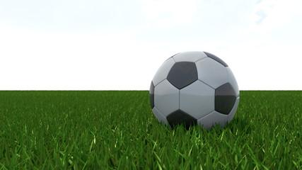 Fussball auf Rasen