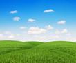 mounds  grass