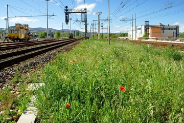 Railroad close to a tuscan station