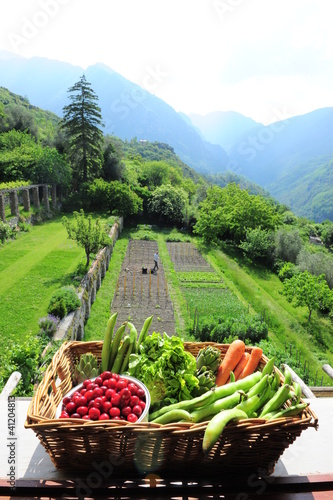 Jardin et panier de fruits et légumes Bio