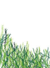 Grüne Blätter Hecke