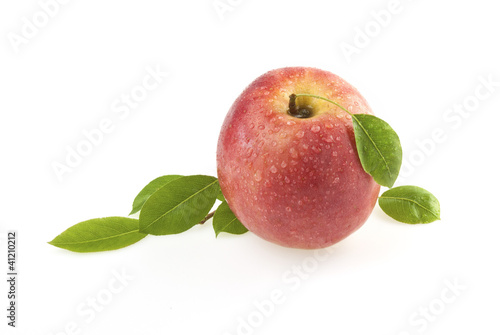 Rose apple with leaves