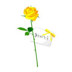 バラ(ありがとう)