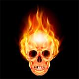 Fototapety Scary skull on fire