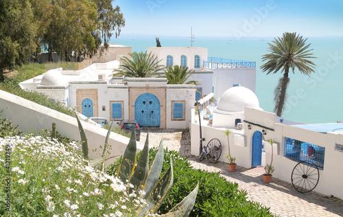 In de dag Tunesië Tunis Sidi Bou Said- HDR